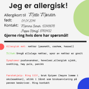 allergikort Mette Mønster